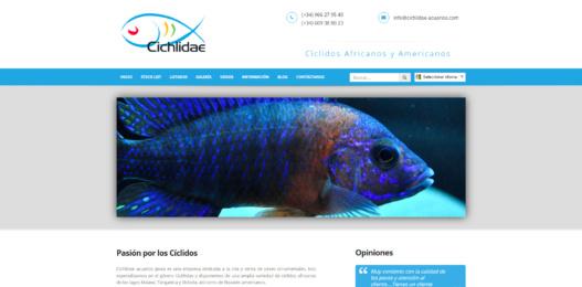 Cichlidae Acuarios Jávea